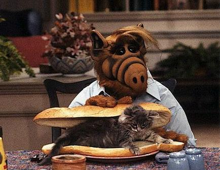 Cat_sandwich